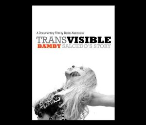 transvisible