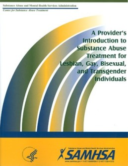 providers-guide-cover
